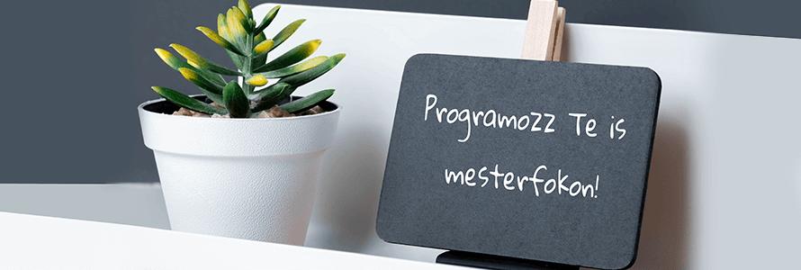 Mi fán terem az objektumorientált programozás?